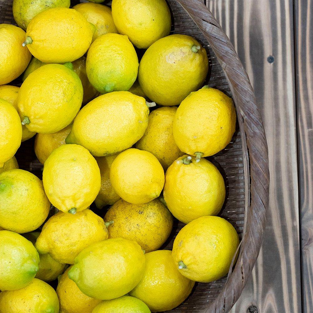 宮崎県産 レモン 2kg