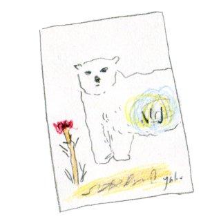 ポストカード(クマ)