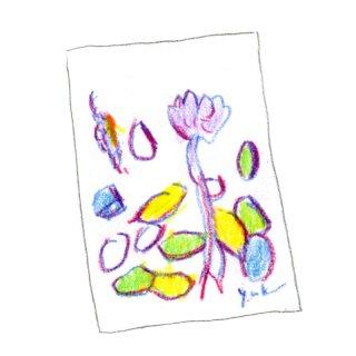 ポストカード(花)