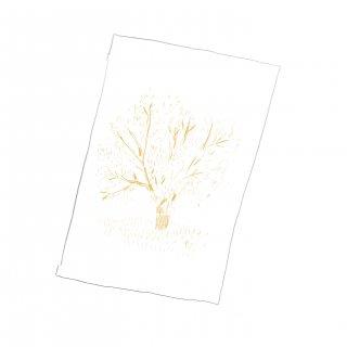 光の木(箔押のポストカード)