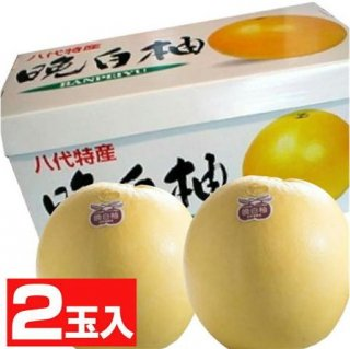 晩白柚2玉