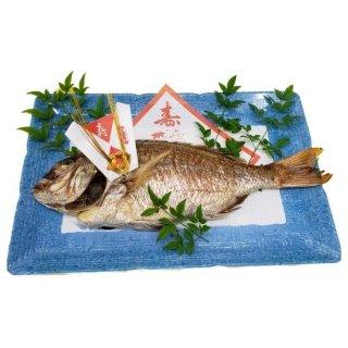 店舗限定!! 鯛の塩焼き