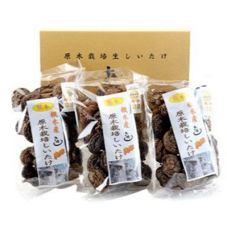 落合農林 乾燥椎茸中葉厚肉 100g×3袋セット