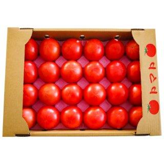 杉田農園 いろはトマト4kg