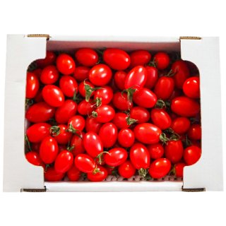 杉田農園 アイコトマト1.5kg
