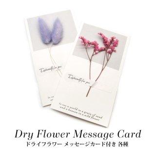 ドライフラワー メッセージカード付き 各種 7-21