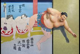 相撲の新技(3Dポストカード)
