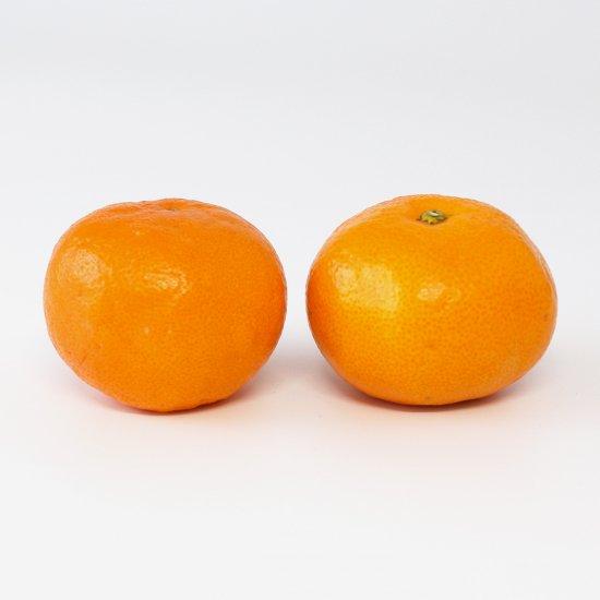ゆら早生 特上 Mサイズ 3kg 果実個数 約24個(11/10以降順次出荷予定)