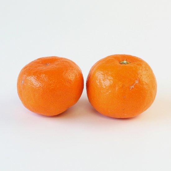 ゆら早生 上 Sサイズ 3kg 果実個数 約24個(11/10以降順次出荷予定)