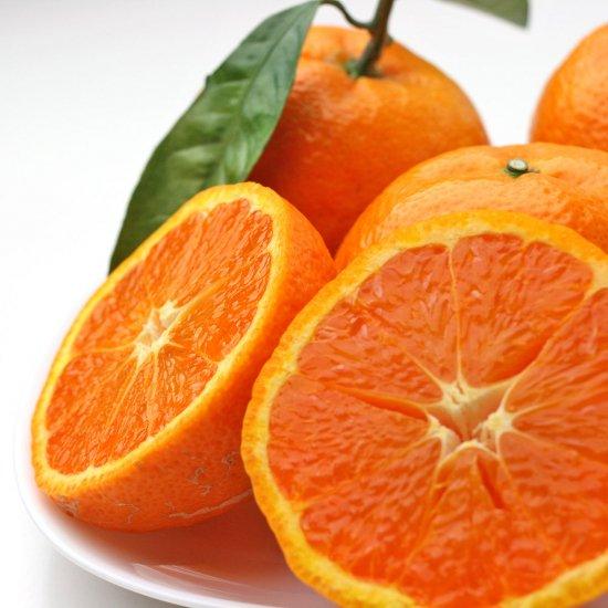 カラオレンジ 特上 2Lサイズ 4.5kg(4/15以降出荷予定)