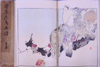 省亭花鳥画譜 一〜三     Seitei Kacyo Gafu(Seitei  Birds and Flowers  Vol.1〜3)