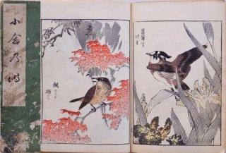 小禽乃塒   Kotori no Negura  (The birds' home)    Birds and plants