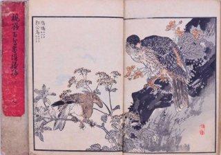 楳嶺百鳥画譜  続編天地人   The sequel to Bairei Hyakucyo Gafu (Various Birds and Flowers)