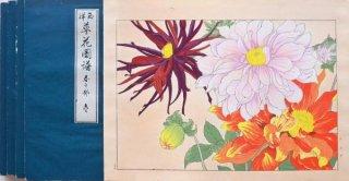 西洋草花図譜