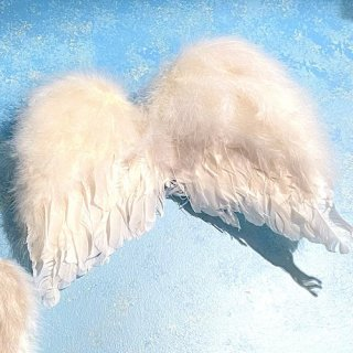 天使の羽根 Mサイズ