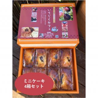 いちじくミニケーキ  8コ(4箱セット)