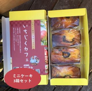 いちじくミニケーキ  4コ(3箱セット)