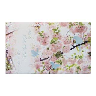 令和3年 桜の通り抜け貨幣セット