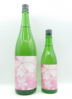 【春季限定】菊の司 季楽<br>純米霞酒 桜<br>720ml / 1800ml