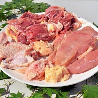 【送料無料】青森シャモロック1羽 もも肉、胸肉、ささみ、手羽先、手羽元×各2、ガラ×1カット済み 約2kg
