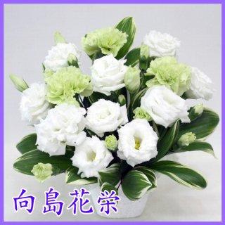 【供花】グリーンのカーネーションのお供えアレンジメント