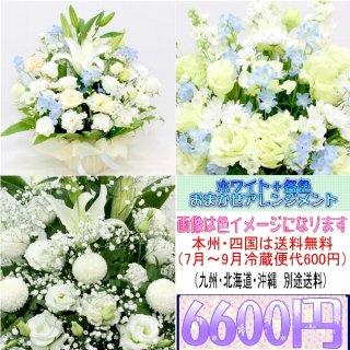 24.供花 ホワイト+各色 お供え用おまかせアレンジメント6,600円
