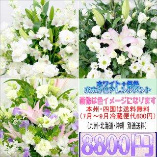 26.供花 ホワイト+各色 お供え用おまかせアレンジメント8,800円