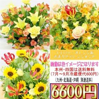 14.イエロー・オレンジ系おまかせアレンジ 6,600円