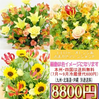 16.イエロー・オレンジ系おまかせアレンジ 8,800円