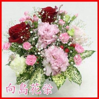 【誕生日・お祝い】赤バラとトルコキキョウのキュートなアレンジメント