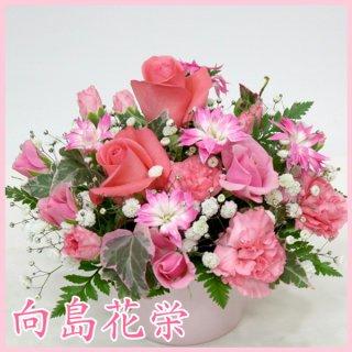 【誕生日・お祝い】ビーンズポット・アイリーン