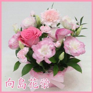 【誕生日・お祝い】ピンクのお花の可愛い小ぶりなアレンジメント