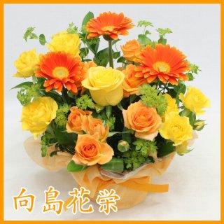 (誕生日・お祝い)ガーベラ(オレンジ)とスプレーバラの明るいアレンジメント