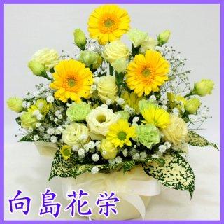 (供花)イエローガーベラのお供えアレンジメント