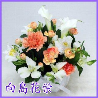 (供花)カラーとオレンジカーネーションのお供え花
