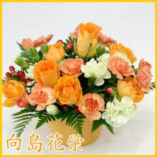 【誕生日・お祝い】ビーンズポット・オレンジ