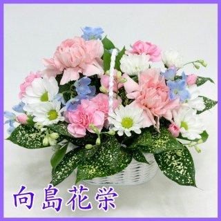 (供花) 花しぼり ピンクカーネーションとホワイトマムのお供えアレンジメント