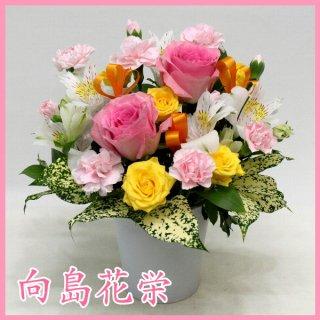 【誕生日・お祝い】ピンクバラの明快なアレンジメント