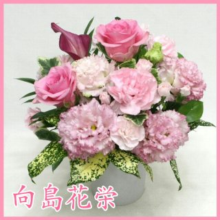 【誕生日・お祝い】ピンクバラとトルコキキョウのキュートなアレンジ