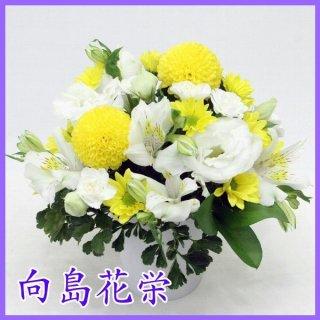 供花 イエローピンポン菊とホワイトフラワーのお供えアレンジメント