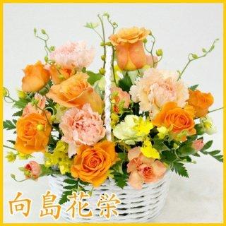 (誕生日・お祝い)花しぼり オレンジ