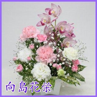(供花)シンピジュームとカーネーションのお供えアレンジメント