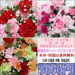 サンクスママ・母の日 ピンク・レッド系おまかせアレンジメント3,850円