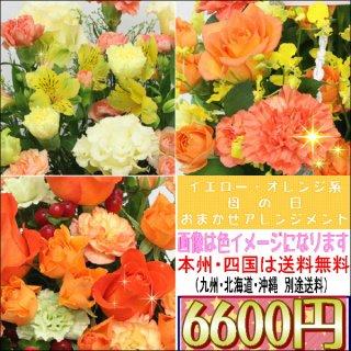 サンクスママ・母の日 オレンジ・イエロー系おまかせアレンジメント6,600円