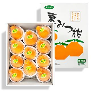 【送料無料】夏みつ柑 3kg箱【不知火】