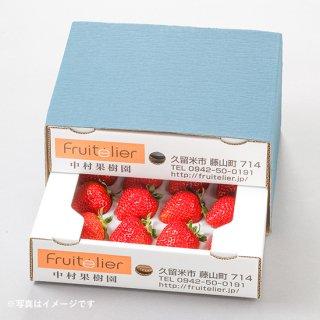 特選 完熟いちご食べ比べギフト(12玉前後×2箱)おまかせ2種・各1箱ずつ
