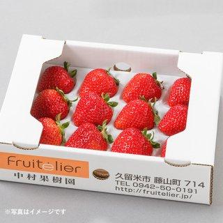 特選 完熟いちごギフト(12玉前後×2箱)〈あまおう〉