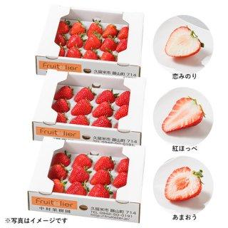 特選 完熟いちご食べ比べギフト(12玉前後×3箱)