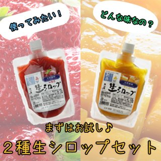 <img class='new_mark_img1' src='https://img.shop-pro.jp/img/new/icons30.gif' style='border:none;display:inline;margin:0px;padding:0px;width:auto;' />【人気!】おためし2種生シロップセット ※