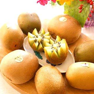 農家の厳選した4種類のキウイフルーツ/キウイフルーツカントリーJapan           の商品画像